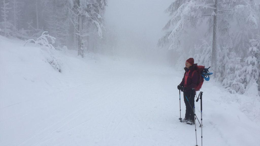 Out and about - Beim Winterwandern im Nordschwarzwald